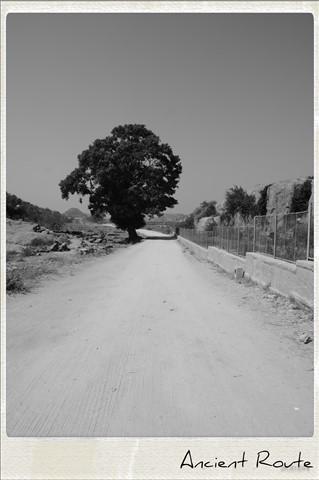 Ancient route