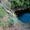 P1050929_waterfall gully_20100411_36
