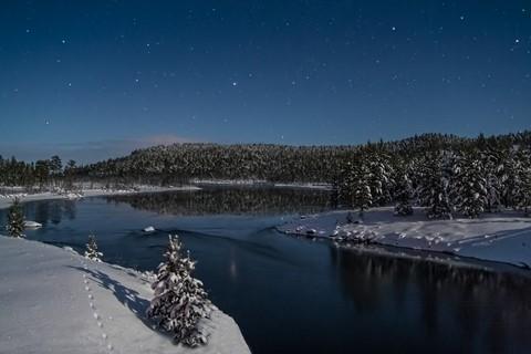 Foxriver  moonlight