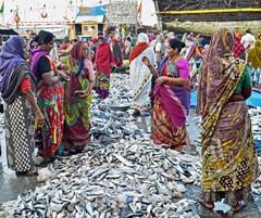 Diu fish market