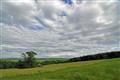 Marsh Hill