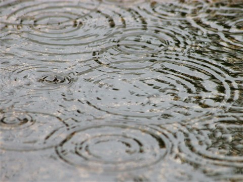 Rain_7606