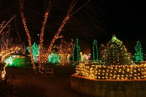 Boise-Botanical-Garden-Ligh