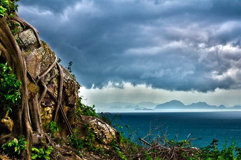 samui-island-view-sea-tree-cliff