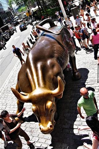 Wall Street Bull dpr