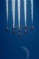 Snowbirds over the Moon