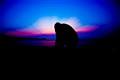tiffany sunset