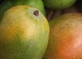 Soft Mango Skin