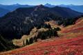 Green Mountain, WA North Cascades