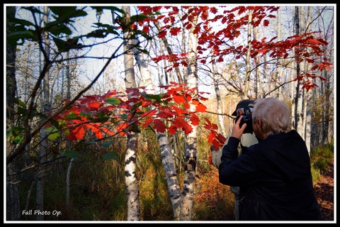 Photo Op - fall colors. Bar Harbor, Maine.