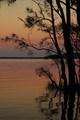 Myall Lakes sunrise 2