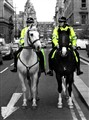 Mounted police woman/man