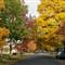 autumn_streets_7