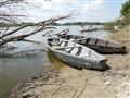 river rowboats