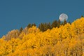 Colorado autumn full moon setting