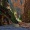 The Narrows at Zion Park