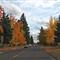 autumn_streets_2