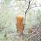 karls.2012.05.07.flora.d700-9128