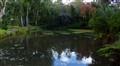 Silverhurst Pond