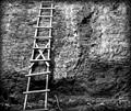 X-ladder