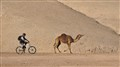 Race in the desert