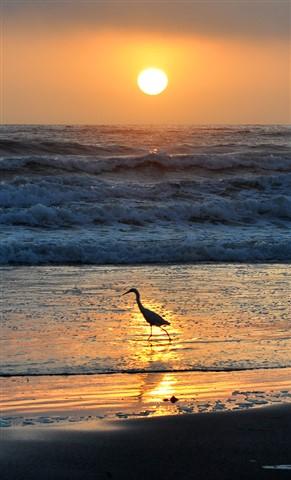 Morro Sunset 06