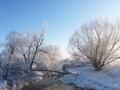Along Boulder Creek