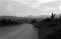 amazon_road