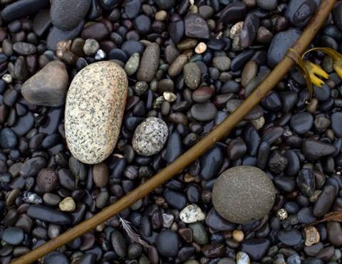 RialtoBeach_Rocks_S9X_052911_reduced