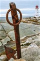 the rusty anchor at peggys cove
