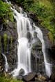 Buckleys Falls