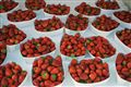 Strawberries at the Nice Market