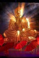Fascinating Budha