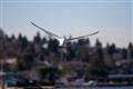 bird-February 01, 2011-002