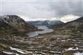 Norwegian Tundra