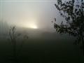 Sunrise Fog