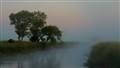 Foggy South Dakota Morning