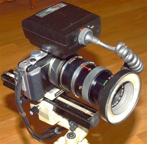 EPL1/OM 50mm 3.5 / T10 ringflash