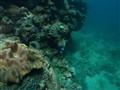 compact underwater