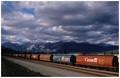 Endless train, somewhere in Alberta...