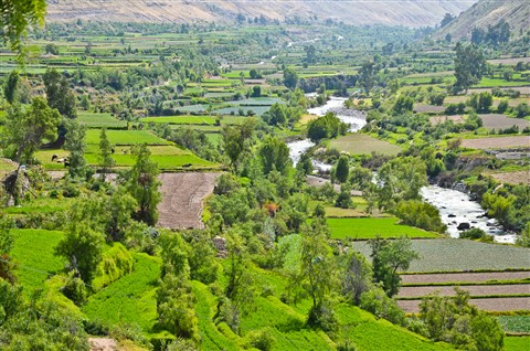 Valley at Arequipa - Peru