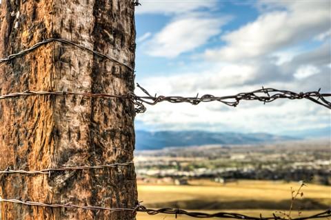 Montana Views-2