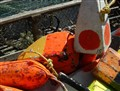 Lobster pot markers-2