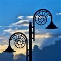 Nautilus Lamps