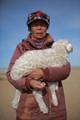 A Mongolian woman picks a lamb from her flock.