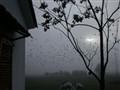 Fog in my home !