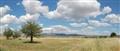 Panorama SOFIADA