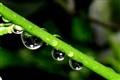 First Rain Drops