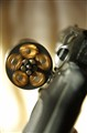 Spinnig Bullets