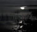 Siverskoe lake. Russian North.